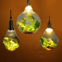 Nordic Coffee Shop Tea Seat Glass Plant Grow Light Big Bulb LED Spotlight Diningroom Living Room Pastoral Ball Green Plants Chandelier