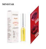 Ministar Dudaklar Maximizer 3D Dudak Parlatıcısı Hacim Dolgunlaştırıcı Tombul Nemlendirici Lipgloss Moda Profesyonel Makyaj Ginger Nane Yağı 5 ML
