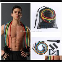 Outdoor Sports Latex Resistance Bands Workout Exercise Pilates Yoga Crossfit Fitness Tubes Pull Rope 11 Pcsset Ljjz801 09Pi6 Rt9Vi