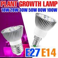 Grow Lights Full Spectrum E27 Plant LED Lamp E14 220V Fito Lamps Greenhouse Lighting 18W 28W 30W 50W 80W 100W Phyto Flower Seeds Bulbs