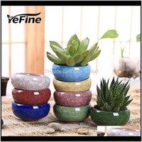 Planters Yefine 8PCSLOT ICECRACK Керамический цветок для сочных растений Маленький бонсайский горшок домой и сад декор мини мини суккулентные горшки Vgea Gu9ei