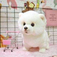 boneca bonito imitação pelúcia brinquedo Bomei cão branco almofada de presente da criança menina