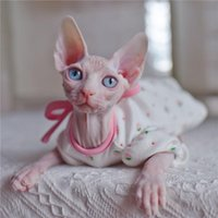 Cat Costumes Sphynx Outfits Flower Cute Strawberry Puff Sleeve Dresses For Cats Hairless Clothes Summer Thin Sleeveless Skirt