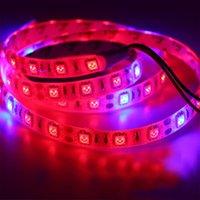 Plante poussant la lumière de lumière LED lumières lumières de culture d'intérieur Lampe étanche à la corde souple flexible avec 12V pour les graines de fleurs hydroponiques de serre FedEx