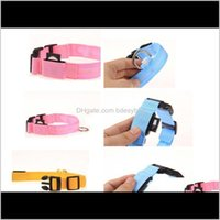 Collars Leashes Supplies Home & Gardenled Nylon Night Led Light Glow In The Dark Small Pet Leash Dog Flashing Safety Collar Drop Delivery 202