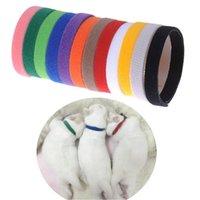 جرو معرف الياقة الهوية الهوية الياقات الياقات الفرقة ل whelp جرو هريرة الكلب القط القط المخملية العملية 12 الألوان