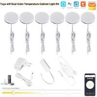 Gabinete LIGHT TUYA WIFI Control Dimmer bajo LED CCT Color Temperatura Temperatura + Doble blanco para la iluminación del armario de la cocina