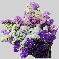 60 cm Kristal Çim Doğal Taze Kurutulmuş Korunmuş Beni Unutma Çiçekler, Gerçek Sonsuza Lover Çim Şube Ev Masa Dekorasyon 1251 V2