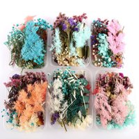 Decorative Flowers & Wreaths Dried Flower Dry Plants For Candle Epoxy Resin Pendant Necklace Jewelry Making Craft DIY Accessori