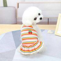 2021 vêtements pour animaux de compagnie gilet multicolore gilet chien dentelle dentelle tensiaire robe mignon chat t-shirt été jupe arc-en-ciel d'été pour fille de chiot