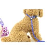 Dog Collars & Leashes 100Pcs Lot Training Leash Slip Pet Nylon Rope Lead Strap Adjustable Traction Collar Accessories