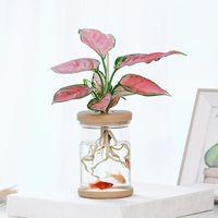Vases Plant Pots Lazy Transparent Flower Pot Automatic Water-absorbing Flowerpot Imitation Glass Livingroom Decoration
