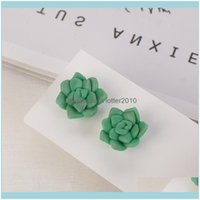 Jewelryhandmade 3D Polymer Clay Plants Suulent Earrings Simulated Lovely Cute Small Flowers Stud Earring For Women Gift Drop Delivery 2021 Y