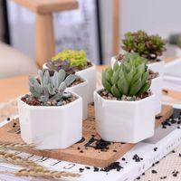 Céramique Bonsaï Pots en gros Mini Porcelaine de fleurs de porcelaine blanche Fournisseurs pour ensemencement Succulent intérieur Planterers de pépinière à domicile maritime GYQ