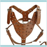 Collars Leashes Supplies Home & Gardenpet Rivets Imitation Leather Big Chest Strap Large Dog Pet Traction Vest Style Decorative Aessories Dr