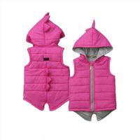 Brand Enfant Kids Baby Girl Garçon Gilet Dinosaure Veste à capuche Veste à glissière à capuche Manteau gilet d'hiver épais d'hiver Warm Outwear 0 5T