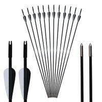 6ピース31インチアーチェリーのガラス繊維の矢印狩猟裸のプルーフのガラス繊維の矢印が長い長い弓矢のための鋼の点が付いているガラス繊維の矢印
