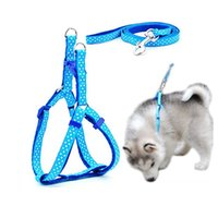 1. 0*120cm Dog Harness Leashes 1000pcs Nylon Printed Adjustab...