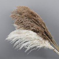 Dekoratif Çiçekler Çelenk Doğal Kurutulmuş Pampas Çim Ev Dekor Kabarık Beyaz Pembe Reed Vintage Stil Düğün Dekoration Noel Partisi B