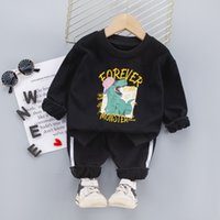 Toddler Clothing Sets Baby Suit Autumn Clothes For Newborn Baby Boys Clothes Hoodie+Pant 2pcs Outfit Kids Costume