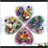 Festive Party Supplies Home Garden1Box Epoxy Filler Real Dried Flower Mixed 3D Nail Stickers Decor Herbarium Craft Decorative Flowers & Wreat