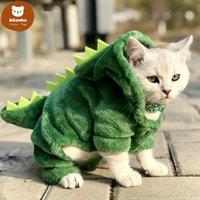 Costumes de dinosaures d'animaux de compagnie Costumes de dinosaure drôles Manteau hiver chaleur chat en molleton pour petits chats chaton kitten hoodie chiot vêtements xs-xxl xw