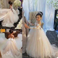 Cute Flower Girls Dress Sheer Neck Long Sleeve Ball Gown Lace Appliques Children Birthday Party Dresses