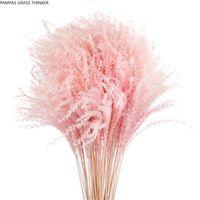الألوان القابلة للتخصيص الضوء الطبيعي الوردي 20 قطع الزفاف بامباز الزهور عيد الحب هدية مجففة ريد زهرة باقات الزهور الزخرفية البيضاء