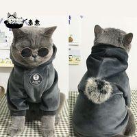 Ropa de mascotas con capucha con capucha con capucha capa de pelo chaqueta de dibujos animados perro divertido ventilador protección ropa perros gatos enfriar pijamas gato disfraces