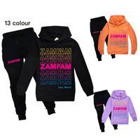 Clothing Sets ZAMFAM Baby Boys Thin Long Sleeve Kids Clothes Cartoon Print Hoodies Girls Costume Children Sweatshirts With Pants For