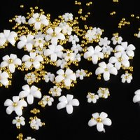 White Pink Acrylic Flowers Resin Fillings DIY Nails Accessories Mixed Beads Nail Art Decoration Supplies Fashion