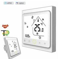 Smart Home Control 24V 220V Greenhouse Thermostat WIFI RS485MODBUS Valfritt för gaspanna genom passiv kontaktdry Kontakt
