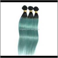 Ombre Weaves Brasiliani Bundles WeFts Due tono peruviano indiano indiano Mulino mongolo Mink Virgin Human Hair PSGMF LRJVS