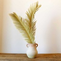 Natural Dried Plant Sago Cycas Branch Fruticose Dracaena Leaf Dry Palm Fan Leaves Wedding Party Home Table Decoration Accessory G0913