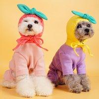 Sonbahar ve Kış Köpek Meyve Kapüşonlu Dört Bacaklı Kumaş Pamuk Teddy Ayı Eğlenceli Evcil Hayvandan Daha Straigh