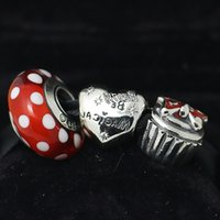 Authentic 925 Sterling Silver Charms and Murano Glass Bead Set with Charm Box Fits European Pandora Jewelry Charm Bracelets PA006