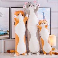 Peluche dei cuscini giocattoli delle bambole della bambole del regalo di compleanno del gatto del gatto del gatto del giocattolo dei bambini dei bambini dei bambini dei bambini dei bambini dei bambini dei bambini dei bambini del giocattolo