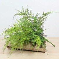 Creatieve plastic groene planten 7 stelen kunstmatige fern asperges gras bloem struiken thuiskant kantoor desor plant decoratieve nep boom bloemen wr