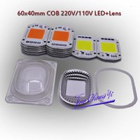 LED COB Grow White Chip+Lens Reflector 50W 30W 20W 110V 220V For Flood Light Strips