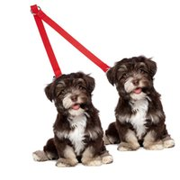 Dog Collars & Leashes Dual Twin Lead Walking Leash Double Pet Splitter Coupler With Clip For Collar Harness 2 Dogs Elastic