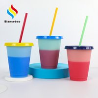 Customized 16Oz Big Belly Short Plastic Discoloration Cup 1000ml Plastic Water Cup Color Changing Portable Cup with Straw Manufacturer Bottl