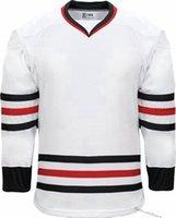 2021 Boş Hokey Formalar Özelleştirmek Yeşil Beyaz Siyah Kırmızı Erkek Dikişli Herhangi Bir Ad Numarası S-XXL Mor Gömlek B0020