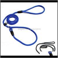 Coleiras de trefillares suprimentos doméstico gota entrega 2021 1dot0 * 140 cm cão de estimação nylon nylon ajustável loop treinamento chumbo colar de tração traction corda