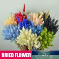 50Pcs Dried Flower Grass Decoration Photography Props for Home Store Wedding Decoration Artificial Flower Lagurus Ovatus Bouquet1