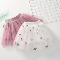 Sommer Mode Kleinkind Mädchen Tutu Rock Baby Tüll Pettiskirt Stickerei Blumenkleid Kinder Chiffon 2t-7T Röcke
