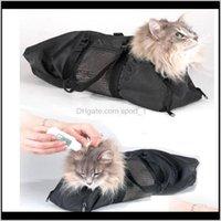 شركات النقل منازل لوازم المنزل حديقة القط ضبط النفس حقيبة الاستمالة التبعي إمدادات الحيوانات الأليفة قطرة التسليم 2021 OSVFM