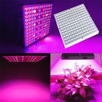 LED Grow Light Panel 45W Full Spectrum Phyto Lamp With 144pcs Leds For Indoor Greenhouse Lettuce Tent Growing Lightings