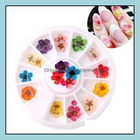 Decorations Salon Health & Beautynail Art Dried - 3D Dry Flowers In Wheel Box Mini Real Natural Nail Supplies Tips Manicure Decor Drop Deliv