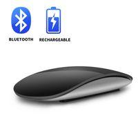 P1 Magic Control Bluetooth-Maus-Akku-Edition Mäuse