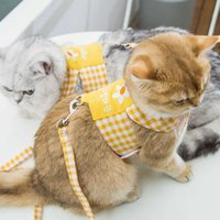 Cat's chest strap traction going out for a walk rope vest gold graduals Garfield puppet blue cat pet products